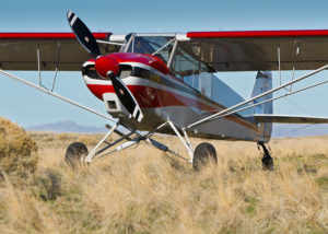 Backcountry Super Cub SQ 2